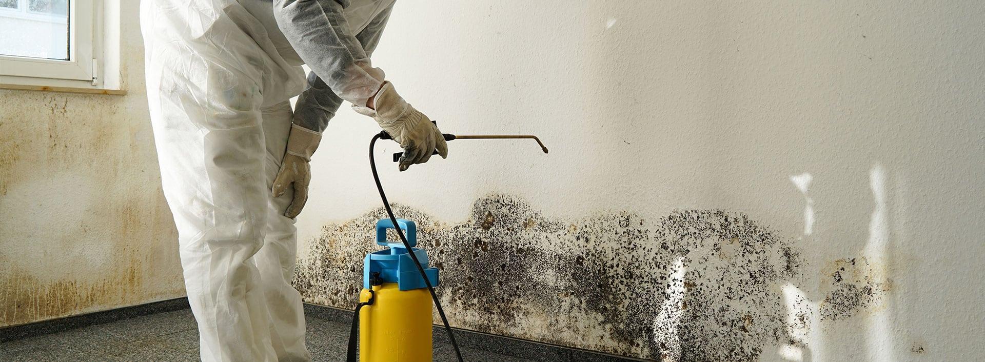 обработка бетона от плесени