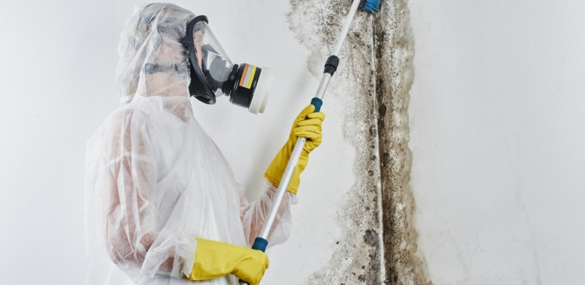 The Most Common Places for Which You Might Need a Mold Remediation Contractor Chicago